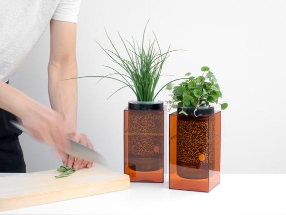 Ընկերությունը Futurefarms օգտագործում է տիեզերական տեխնոլոգիաները աճող բույսերի