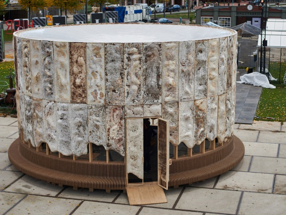 Паскаль Лебук создал биоразлагаемый павильон из грибного мицелия в рамках Голландской недели дизайна