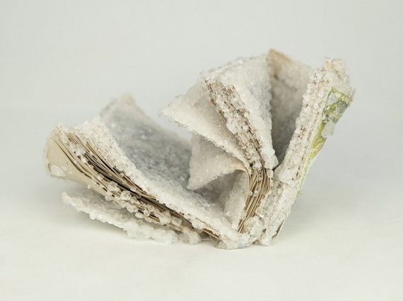 Алексис Арнольд превращает старые книги в покрытые кристаллами скульптуры